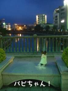 090714-miyanohashi1