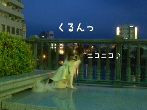 090714-miyanohashi4