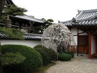 03道明寺