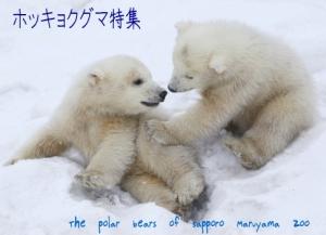 pb_top3.jpg