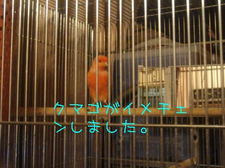 逕サ蜒・092_convert_20100320152738