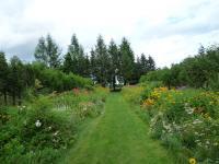 紫竹ガーデン 9