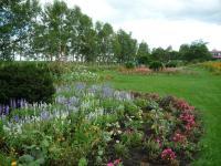 紫竹ガーデン 14