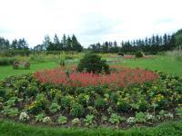 紫竹ガーデン 13
