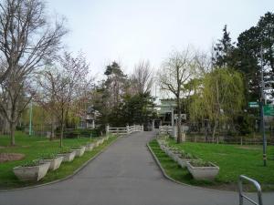 常盤公園 6