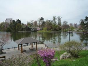 常盤公園 2