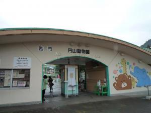 円山動物園 11