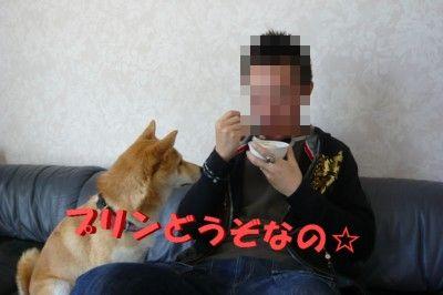 P1110076_20090322221104.jpg