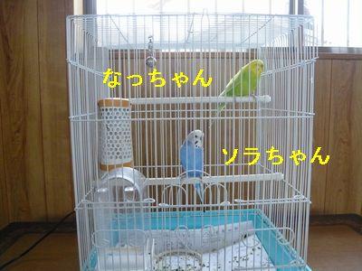 P1120348.jpg