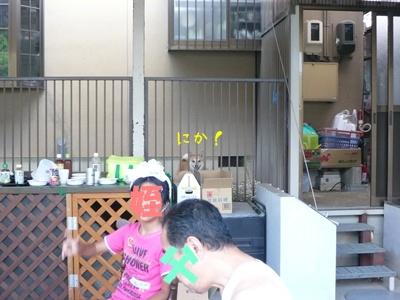 P1140851_20090903003806.jpg