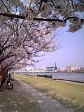 05-04-19_15-19.jpg