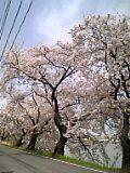 05-04-21_14-15.jpg