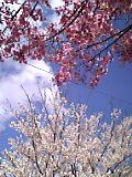 05-04-23_14-48.jpg