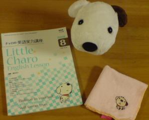 飼い主家族と日本からアメリカに旅行に行き。。。迷子になってしまった犬です。