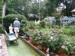 Poppops Garden