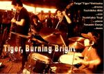 Tiger, Burning Bright