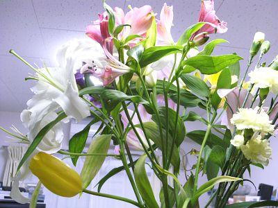 リビングの花たち