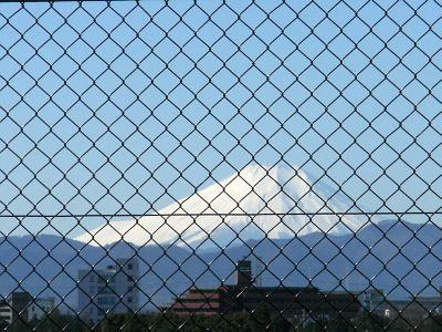La Fuji Bonito