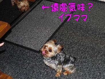 713lo1.jpg