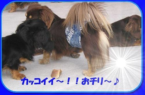 masato116.jpg