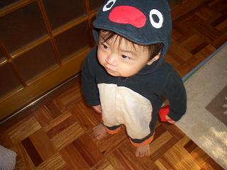 まさにペンギン!