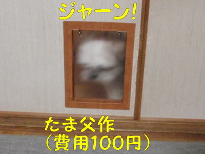 P8170118.jpg
