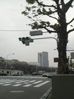 逾樊・ス蝮・convert_20090122145132
