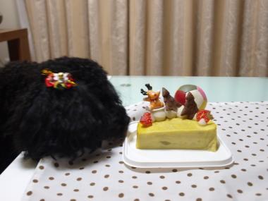 ケーキ食べた~い