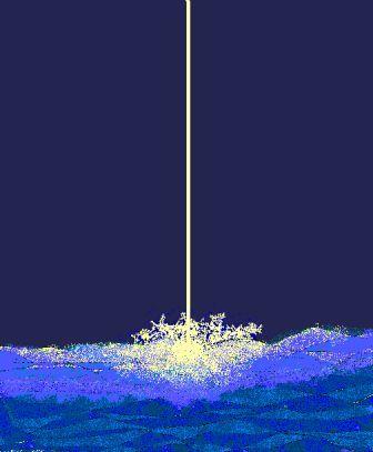 20060420104307.jpg