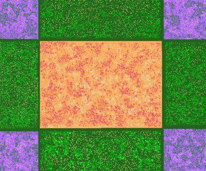 20061219105909.jpg