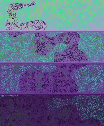 20070713052228.jpg