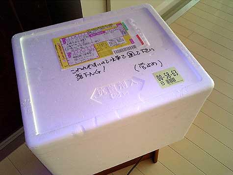 20080913hako.jpg