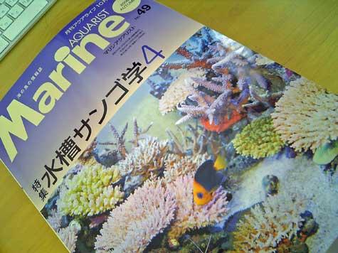 20080924marine49.jpg