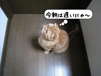 20080918_145154.jpg