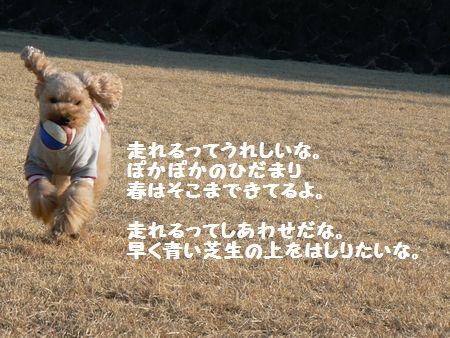 1_20110125133142.jpg