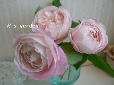 2_20100513210104.jpg