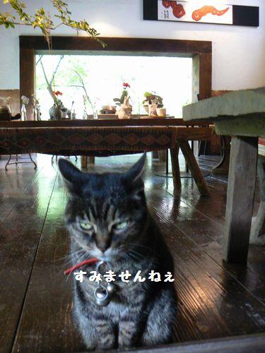 3_20101015184441.jpg