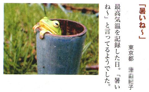 KAERUKEROKERO0129jpg.jpg