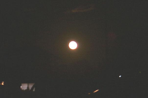 moon10080028.jpg