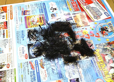 ○○キの髪の毛