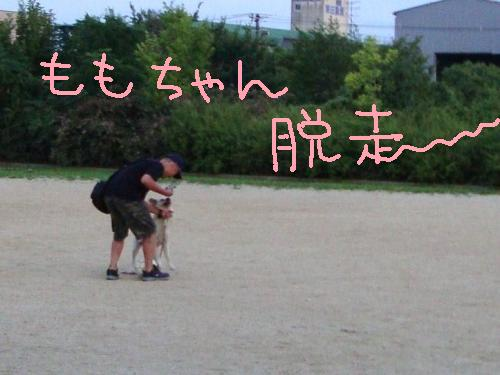 7-21-FUKU10.jpg