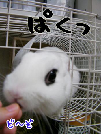 にょろ?ん4
