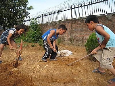 土を肥やす