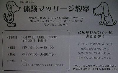 05.11.10.jpg