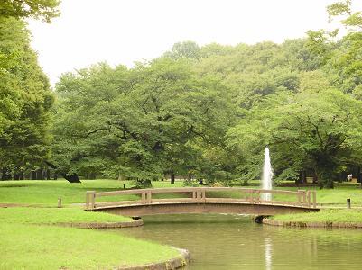 200905代々木公園景色3