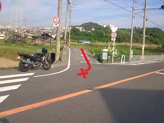 NEC_0011a_20090513214155.jpg