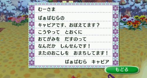 ぱぁおぱむらのキャビアちゃんからの手紙