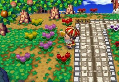きょうの交配花