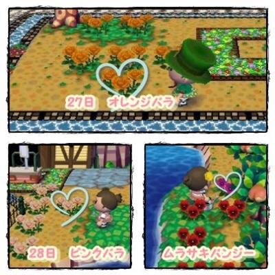 090327.28交配花