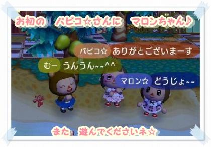 お初のパピコ☆さんと、マロンちゃんと3人で♪